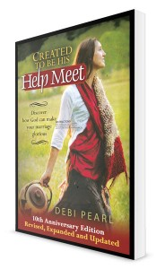 Created to Be His Help Meet book