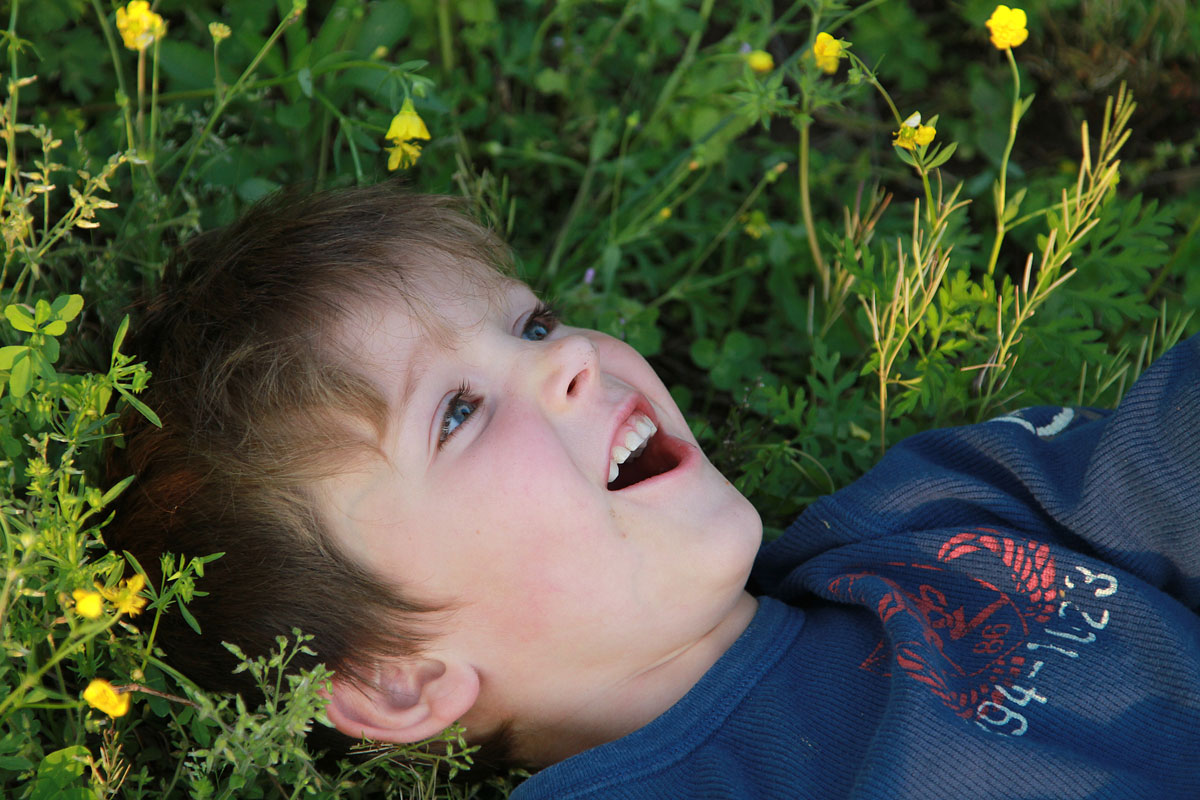 Little boy laying on his back in a field of wildflowers and daydreaming