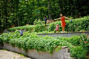 Easling garden